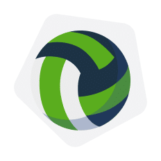 volleyball logo